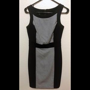 BCX Colorblock Career Dress